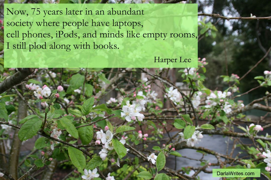credit: www.quotessays.com/gallery/harper-lees-quotes-2.jpg.html