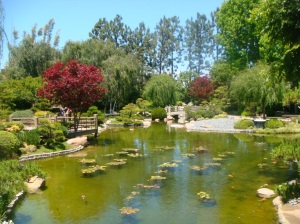 Japanese Gardens  - Long Beach State