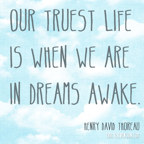 credit: http://emilylevenson.com/monday-motivation-dreams-awake/
